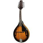 A Style F Cut Mandolin
