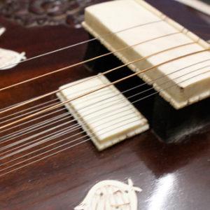 Sitar Strings